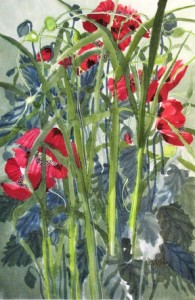 Alfoldy_Garlic-Scapes-and-Poppies-Paper-batik-watercolour-on-tissue-19 x 29 FOR-SALE