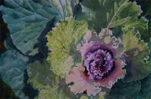 Flowering-Kale-watercolour-Sandra-Donohue-AFCA