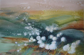 Gidman_Watercolour-Arctic-Cotton-Grass
