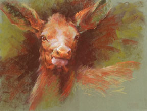 Sharon-Bamber,-Elk-Female,-18-x-24,-soft-pastel